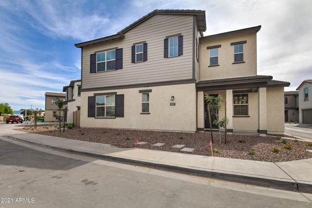 2831 S Central Drive, Chandler, AZ 85248 (MLS #6224379) :: Openshaw Real Estate Group in partnership with The Jesse Herfel Real Estate Group