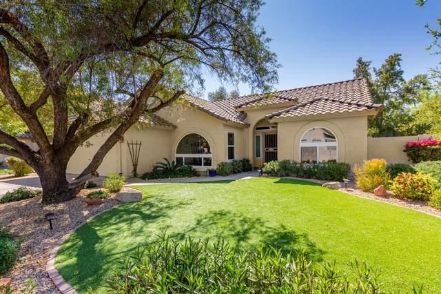 810 N Gull Haven Court, Gilbert, AZ 85234 (MLS #6224388) :: Yost Realty Group at RE/MAX Casa Grande