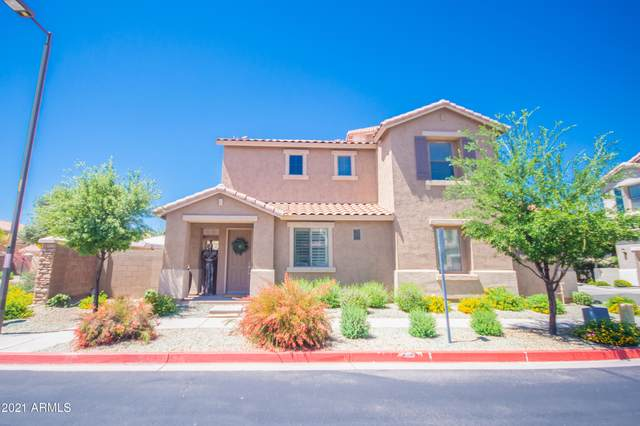 6370 S Forest Avenue, Gilbert, AZ 85298 (MLS #6224396) :: Openshaw Real Estate Group in partnership with The Jesse Herfel Real Estate Group