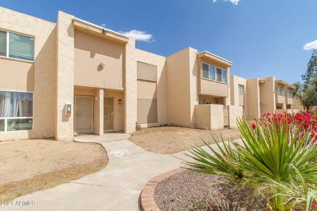 3520 W Dunlap Avenue #189, Phoenix, AZ 85051 (MLS #6224409) :: The Laughton Team