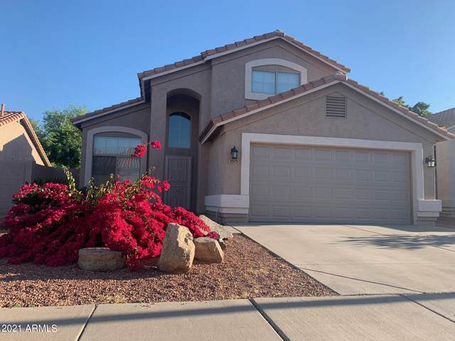 1875 W Raven Drive, Chandler, AZ 85286 (MLS #6224486) :: Arizona 1 Real Estate Team
