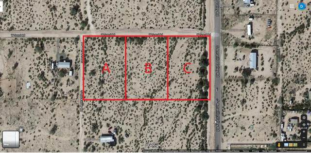 48071 W Sotol Road, Maricopa, AZ 85138 (MLS #6224489) :: The Property Partners at eXp Realty