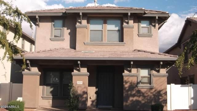 3829 E Kent Avenue, Gilbert, AZ 85296 (MLS #6224491) :: The Laughton Team