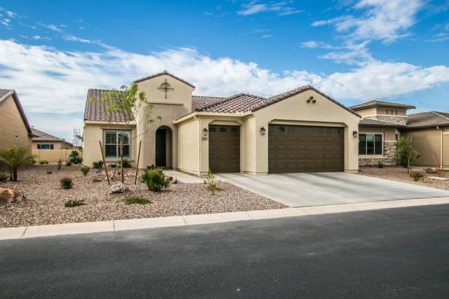 4447 W White Horse Drive, Eloy, AZ 85131 (MLS #6224566) :: Yost Realty Group at RE/MAX Casa Grande