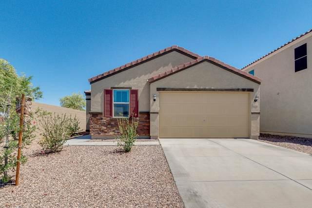 36943 N El Morro Trail, San Tan Valley, AZ 85140 (MLS #6224589) :: Yost Realty Group at RE/MAX Casa Grande