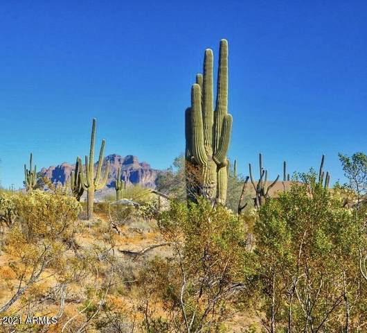 0000 N Wolverine Pass Road, Apache Junction, AZ 85119 (MLS #6224642) :: neXGen Real Estate