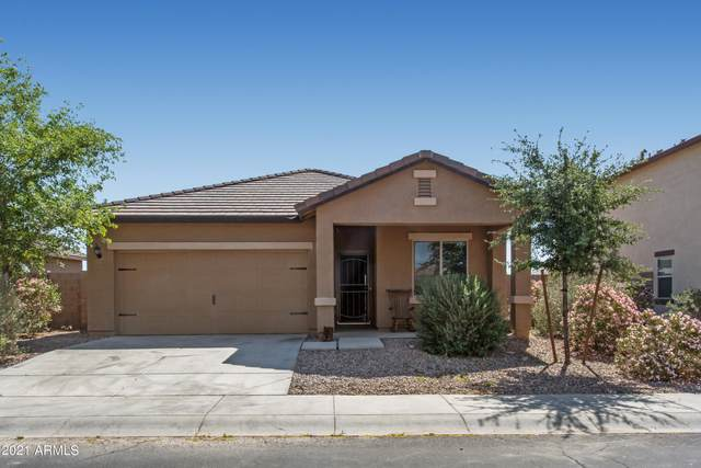 4887 S 245TH Lane, Buckeye, AZ 85326 (MLS #6224647) :: Yost Realty Group at RE/MAX Casa Grande