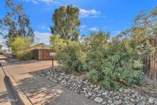 15046 N 28TH Street, Phoenix, AZ 85032 (MLS #6224696) :: Yost Realty Group at RE/MAX Casa Grande