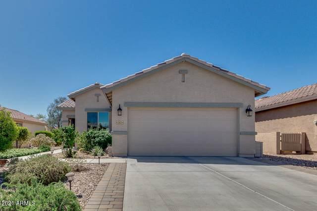 22623 W Shadow Drive, Buckeye, AZ 85326 (MLS #6224708) :: Yost Realty Group at RE/MAX Casa Grande