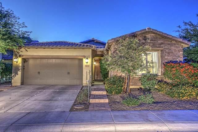 4412 E St John Road, Phoenix, AZ 85032 (MLS #6224781) :: Yost Realty Group at RE/MAX Casa Grande