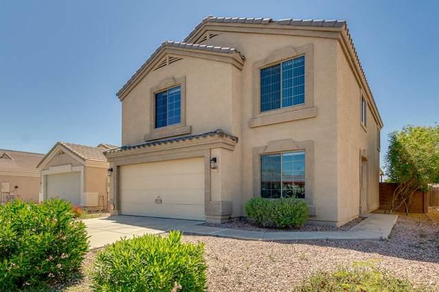 23813 W Hadley Street, Buckeye, AZ 85326 (#6224797) :: The Josh Berkley Team