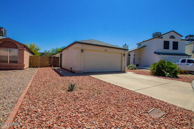 3631 W Camino Del Rio, Glendale, AZ 85310 (MLS #6224844) :: Yost Realty Group at RE/MAX Casa Grande