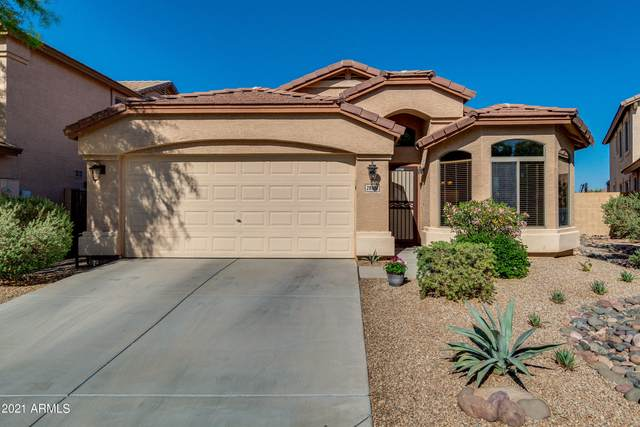 28514 N Desert Hills Drive, San Tan Valley, AZ 85143 (MLS #6224872) :: Openshaw Real Estate Group in partnership with The Jesse Herfel Real Estate Group
