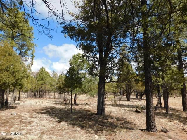 3848 Durango Drive Drive, Happy Jack, AZ 86024 (MLS #6224958) :: Kepple Real Estate Group