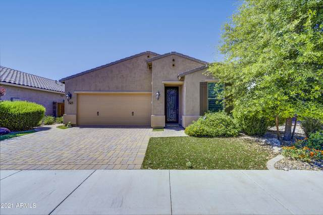2923 W Thorn Tree Drive, Phoenix, AZ 85085 (MLS #6224961) :: Yost Realty Group at RE/MAX Casa Grande