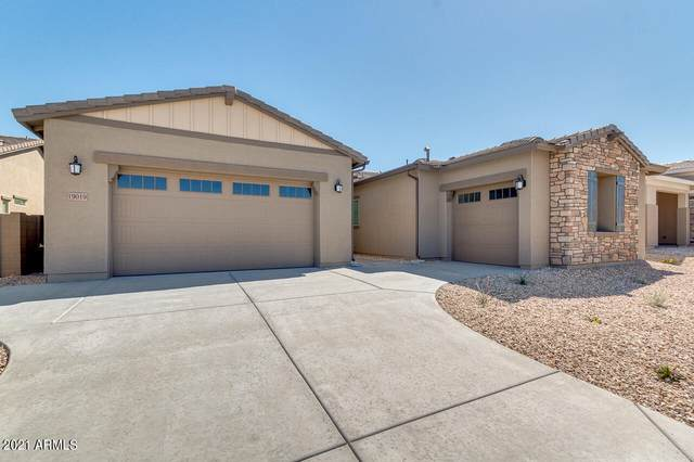 19019 W Cholla Street, Surprise, AZ 85388 (MLS #6224987) :: Yost Realty Group at RE/MAX Casa Grande