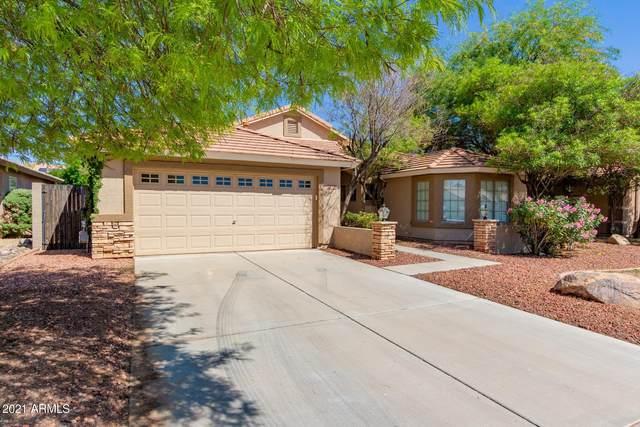 2839 S Aletta, Mesa, AZ 85212 (MLS #6225001) :: Lucido Agency
