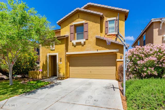 3522 E Terrace Avenue, Gilbert, AZ 85234 (MLS #6225009) :: Yost Realty Group at RE/MAX Casa Grande