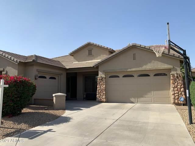 1574 E Grand Canyon Drive, Chandler, AZ 85249 (MLS #6225061) :: Yost Realty Group at RE/MAX Casa Grande