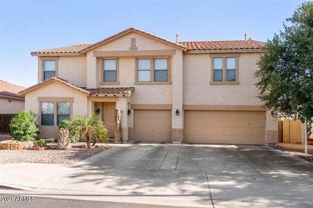 11525 E Queensborough Avenue, Mesa, AZ 85212 (MLS #6225078) :: Zolin Group