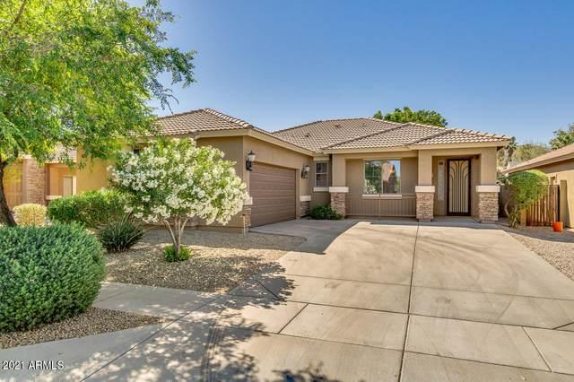 1411 E Gary Way, Phoenix, AZ 85042 (MLS #6225090) :: Yost Realty Group at RE/MAX Casa Grande