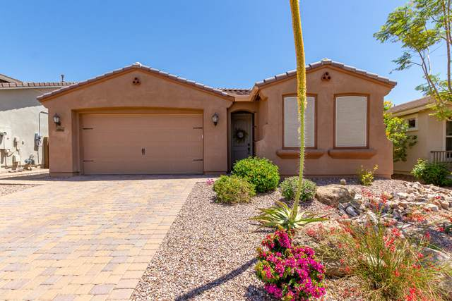 30655 N 138TH Avenue, Peoria, AZ 85383 (MLS #6225139) :: Yost Realty Group at RE/MAX Casa Grande