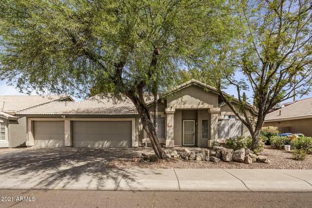 4514 E Hartford Avenue, Phoenix, AZ 85032 (MLS #6225146) :: Yost Realty Group at RE/MAX Casa Grande