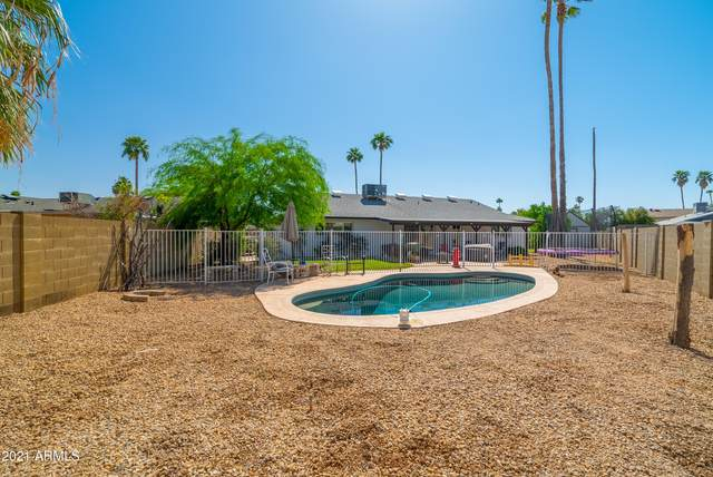 5815 N 46TH Avenue, Glendale, AZ 85301 (MLS #6225174) :: Openshaw Real Estate Group in partnership with The Jesse Herfel Real Estate Group