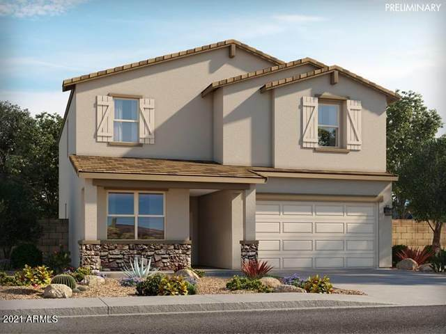 4033 E French Trotter Street, San Tan Valley, AZ 85140 (MLS #6225242) :: Yost Realty Group at RE/MAX Casa Grande
