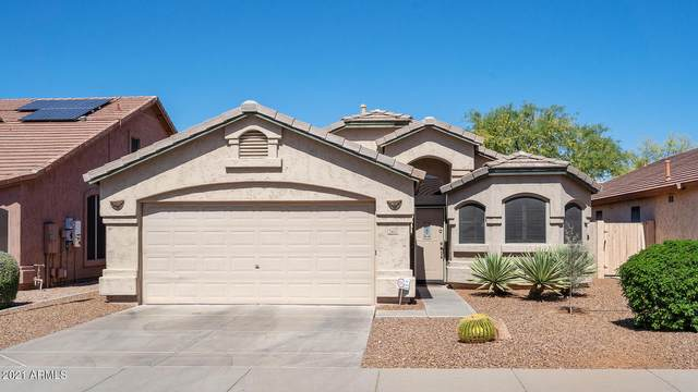 21610 N 44TH Place, Phoenix, AZ 85050 (MLS #6225254) :: Openshaw Real Estate Group in partnership with The Jesse Herfel Real Estate Group
