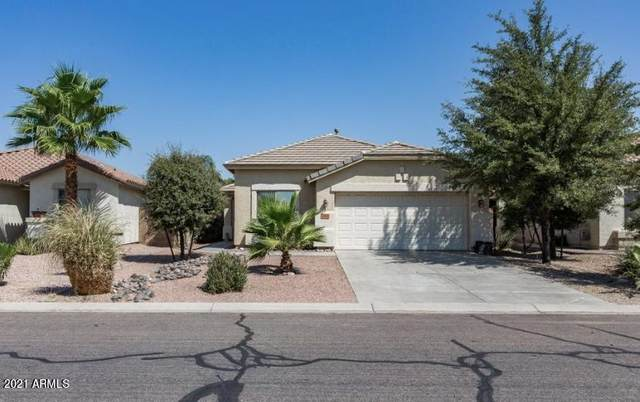 480 W Dexter Way, San Tan Valley, AZ 85143 (MLS #6225263) :: The Copa Team | The Maricopa Real Estate Company