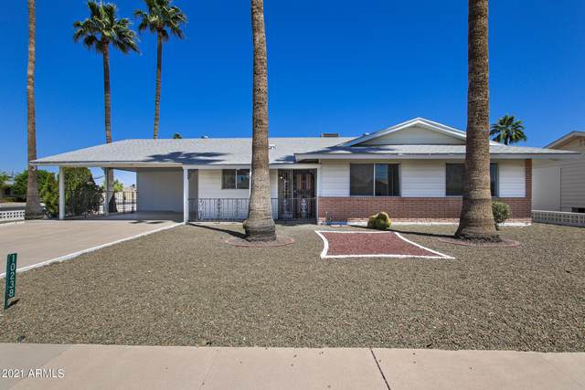 10238 W Deanne Drive, Sun City, AZ 85351 (MLS #6225291) :: Openshaw Real Estate Group in partnership with The Jesse Herfel Real Estate Group