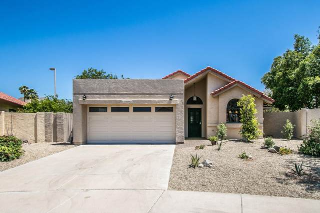 11641 N 112TH Street, Scottsdale, AZ 85259 (MLS #6225297) :: Openshaw Real Estate Group in partnership with The Jesse Herfel Real Estate Group