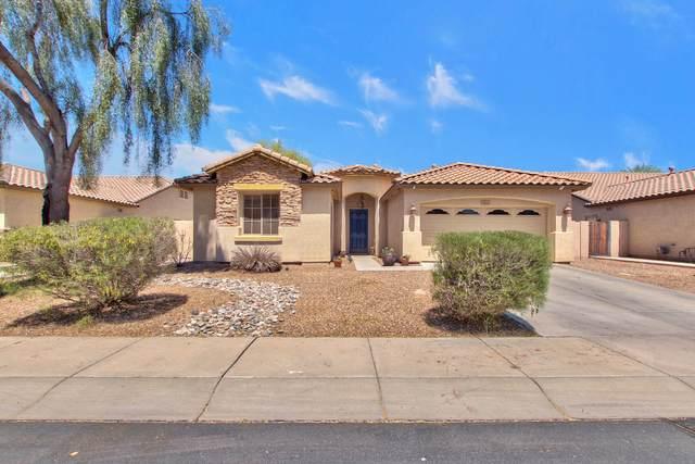 2144 E Ebony Drive, Chandler, AZ 85286 (MLS #6225313) :: The Helping Hands Team