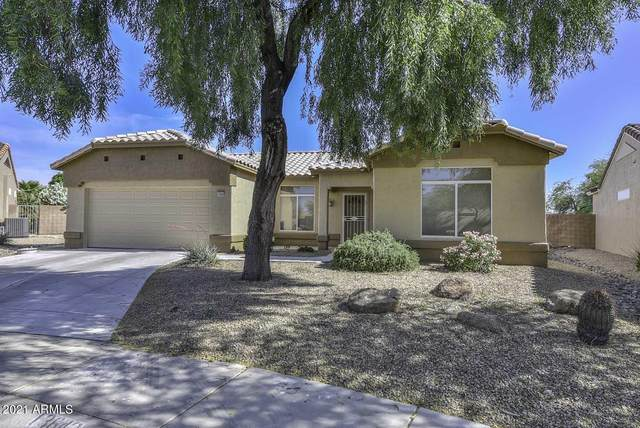 13642 W Antelope Drive, Sun City West, AZ 85375 (MLS #6225328) :: The Luna Team