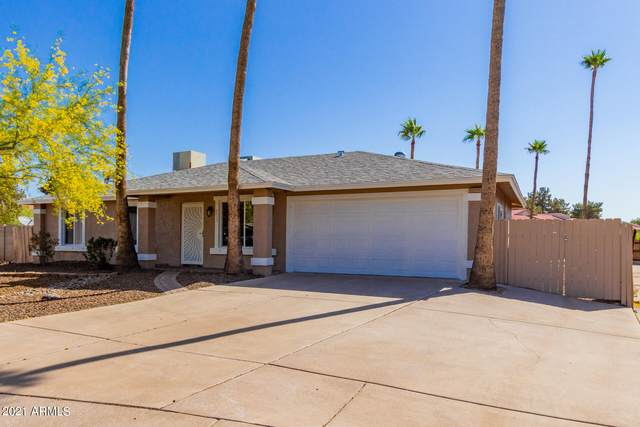 4622 E Capistrano Avenue, Phoenix, AZ 85044 (MLS #6225338) :: Yost Realty Group at RE/MAX Casa Grande
