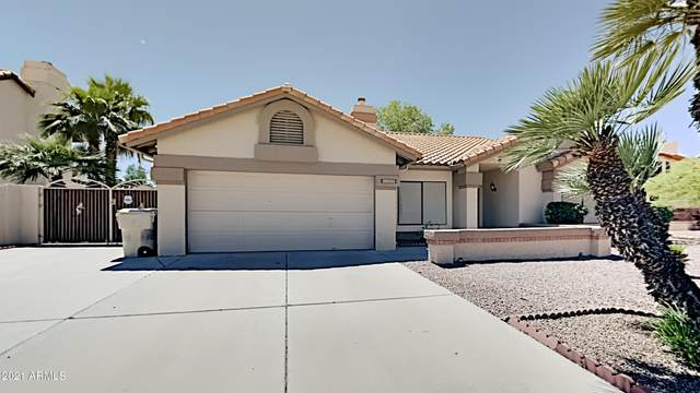 6225 W Grandview Road, Glendale, AZ 85306 (MLS #6225358) :: Yost Realty Group at RE/MAX Casa Grande