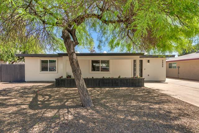 2855 N 71ST Street, Scottsdale, AZ 85257 (MLS #6225374) :: The Helping Hands Team