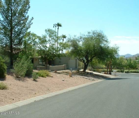 14807 N Deerskin Drive, Fountain Hills, AZ 85268 (MLS #6225405) :: Yost Realty Group at RE/MAX Casa Grande