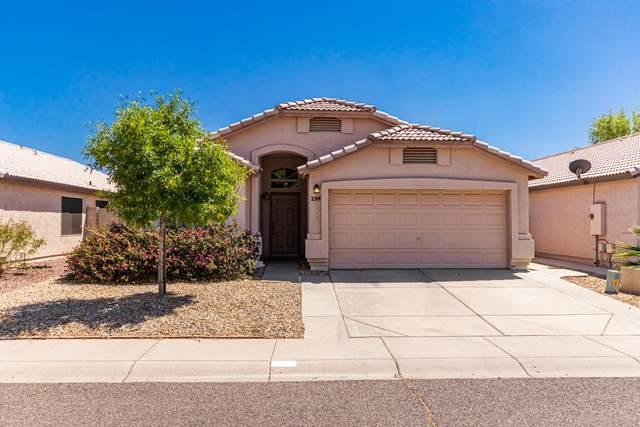 2319 E Aire Libre Avenue, Phoenix, AZ 85022 (MLS #6225428) :: Yost Realty Group at RE/MAX Casa Grande