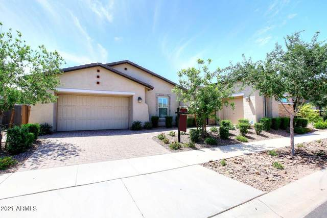 10439 E Tillman Avenue, Mesa, AZ 85212 (MLS #6225462) :: The Helping Hands Team