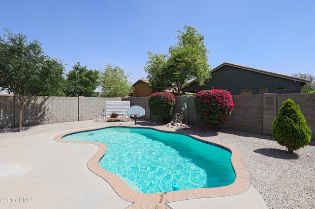18207 W Sanna Street, Waddell, AZ 85355 (MLS #6225474) :: Yost Realty Group at RE/MAX Casa Grande