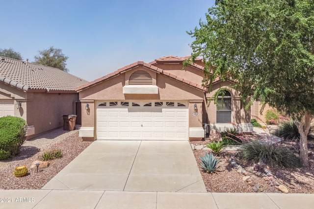 29726 N Broken Shale Drive, San Tan Valley, AZ 85143 (MLS #6225537) :: The Helping Hands Team