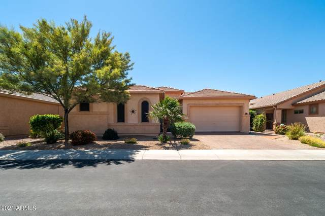 18235 W Stinson Drive, Surprise, AZ 85374 (#6225553) :: The Josh Berkley Team