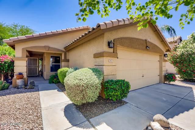 3915 E Renee Drive, Phoenix, AZ 85050 (MLS #6225568) :: Synergy Real Estate Partners