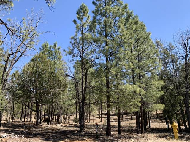 1349 Trail End Drive, Happy Jack, AZ 86024 (MLS #6225587) :: Devor Real Estate Associates