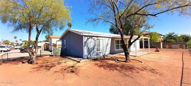 7801 E Javelina Avenue, Mesa, AZ 85209 (MLS #6225601) :: Synergy Real Estate Partners