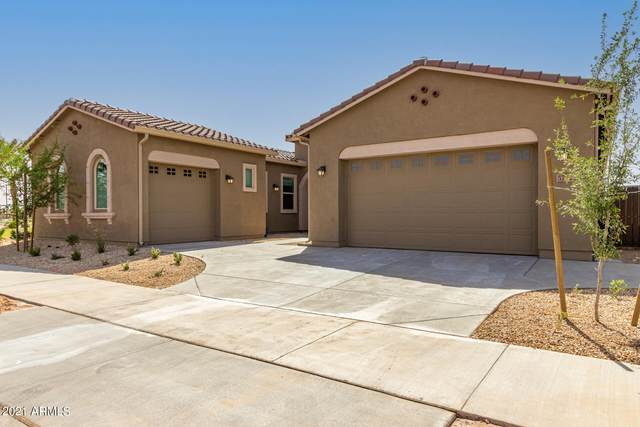 5732 S Cobalt, Mesa, AZ 85212 (MLS #6225624) :: Yost Realty Group at RE/MAX Casa Grande