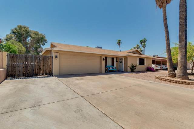 2313 W Catalina Avenue, Mesa, AZ 85202 (MLS #6225638) :: Yost Realty Group at RE/MAX Casa Grande