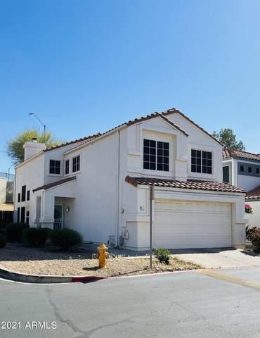 2345 E Gelding Drive, Phoenix, AZ 85022 (MLS #6225648) :: The Luna Team